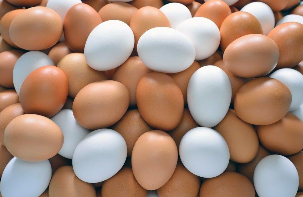 bruine_witte_eieren